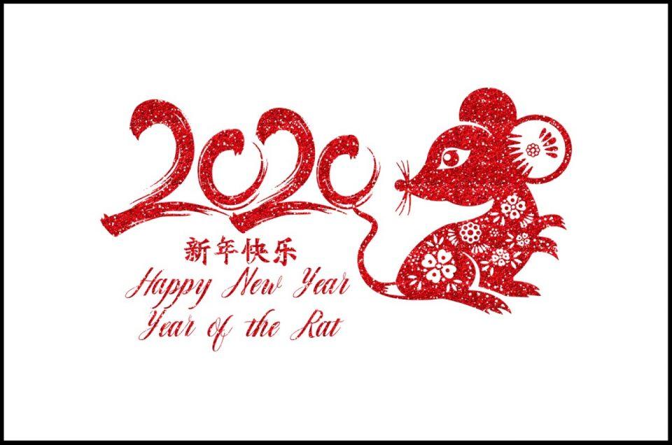 2020 l'anno del topo